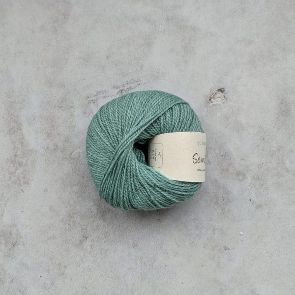 Aqua (106)